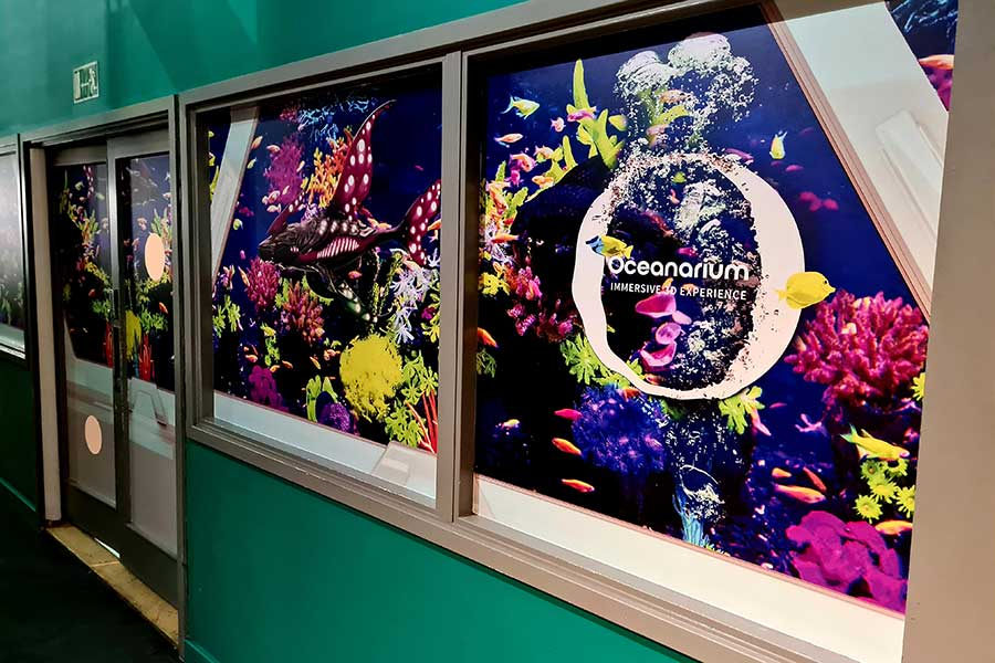 The Interactive Aquarium at Kidspace in Romford features eye catching vinyl window graphics designed and printed by Bluedot Display